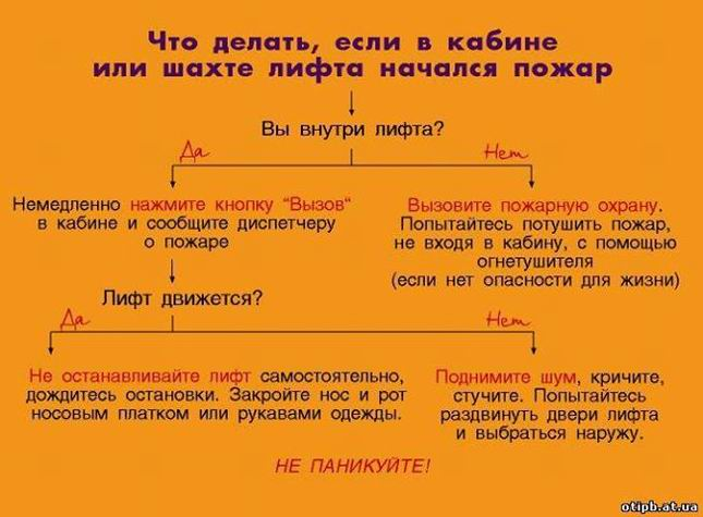http://vizhivai.com/images/easyblog_images/4770/01.JPG