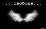 александр федоров аватар