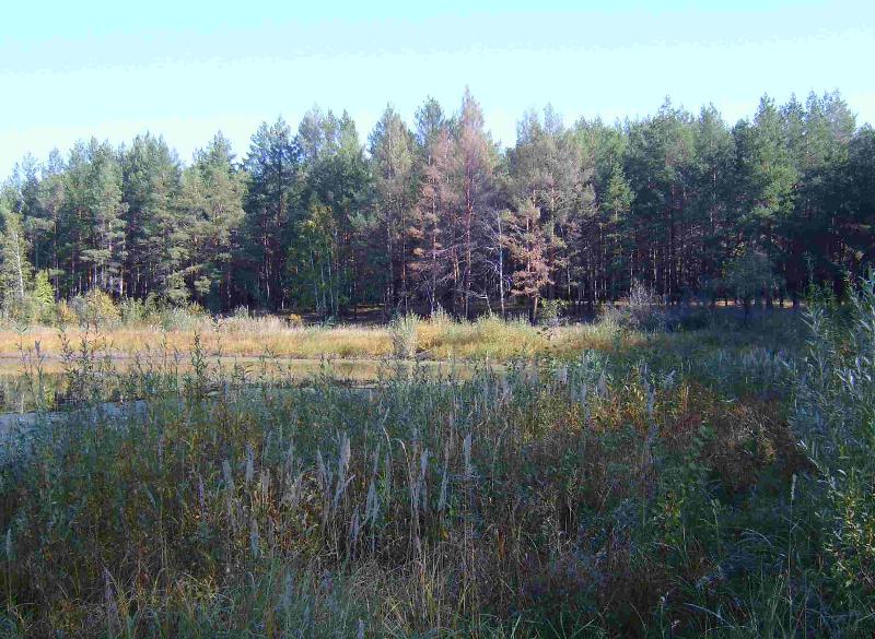 озеро3