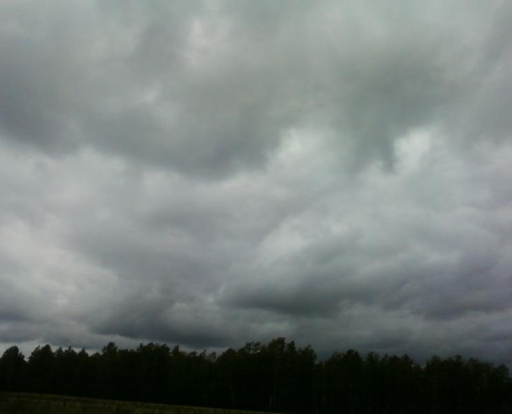 погода1